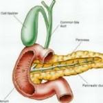 tumore-pancreas